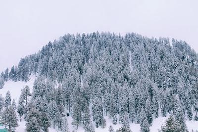 Swat Valley-landscape-Northern-Areas-of-Pakistan.jpg